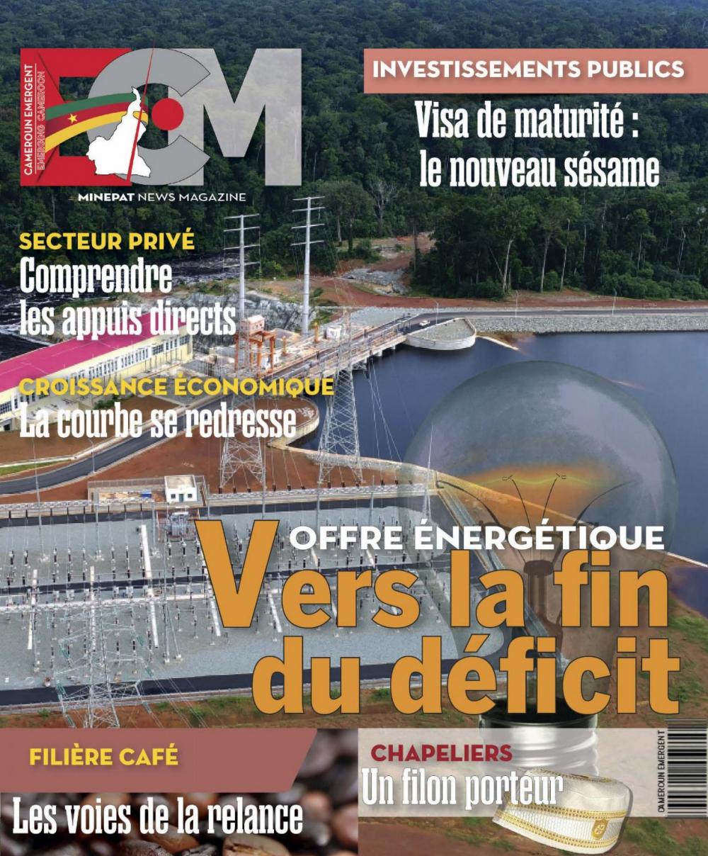 Emerging Cameroon